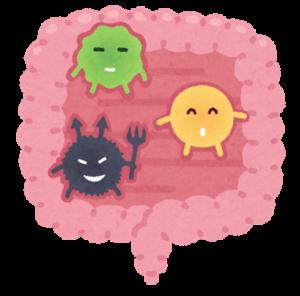腸活★悪玉菌について知ろう★